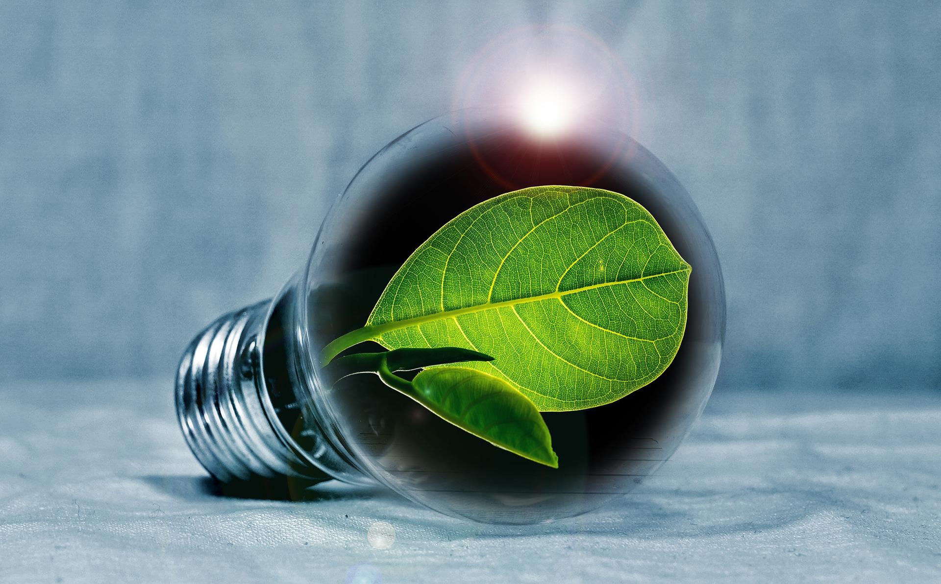Illuminazione a led, responsabilità personale